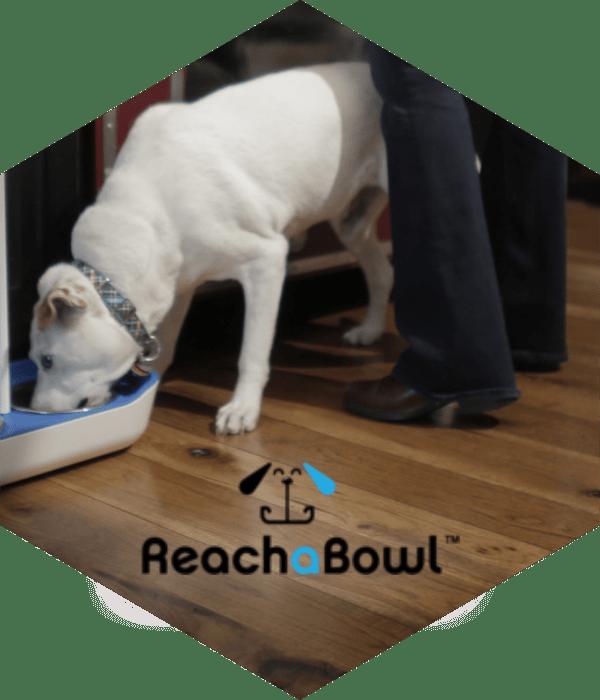 Reach a Bowl